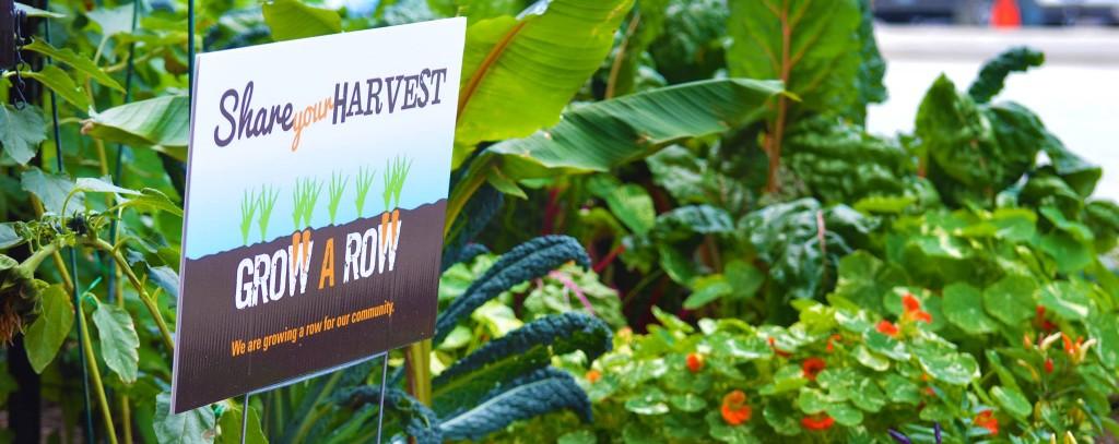 grow a row